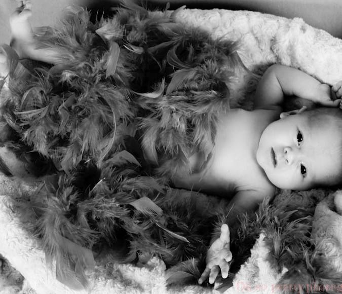 newborn shoot studio photography baby shoot